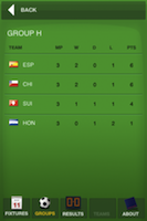 WCup 2010 SA screenshot 3